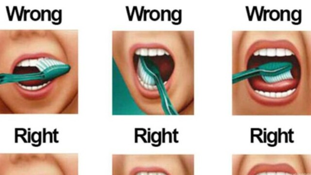 The Proper Way to Brush Your Teeth
